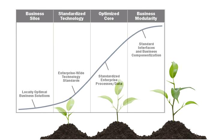 enterprise architecture maturity models